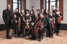 Les Violins Du Roys